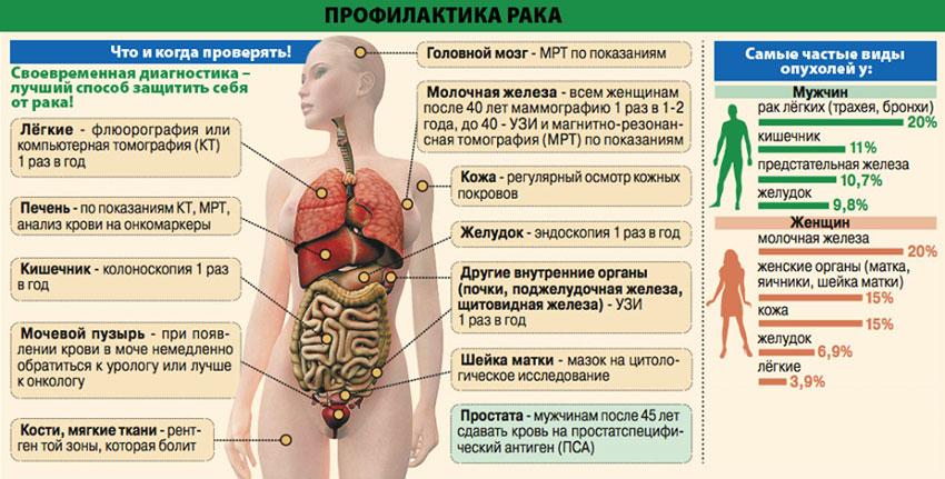 профилактика онкологических заболеваний вторичная