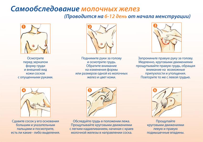 Секс как метод профилактики рака молочной железы фото 747-945